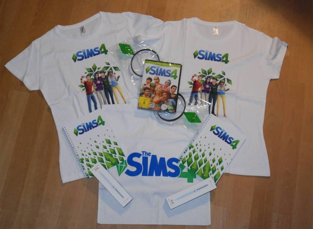 Sims4Gewinn